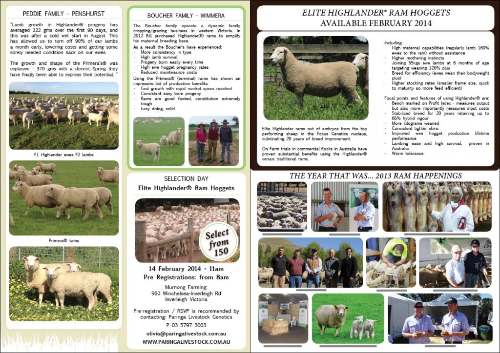 Ram News Dec 2013 P2&3